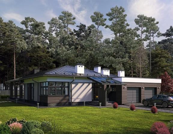 Одноэтажный жилой дом и хозблок